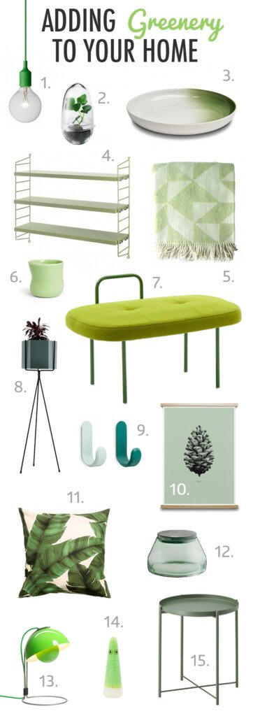 Adding Greenery To Your Home Pantone Colour Of The Year